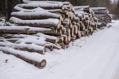Οι κορμοί περικοπών των δέντρων βρίσκονται κάτω από το χιόνι χειμερινή αναγραφή καυσόξυλο Στοκ Φωτογραφίες