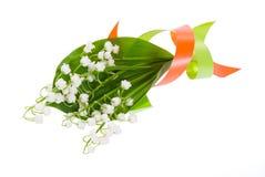 οι κρίνοι λουλουδιών χρώματος δένουν την κοιλάδα με ταινία Στοκ Φωτογραφία