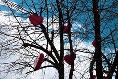 Οι κόκκινες καρδιές κρεμούν σε ένα δέντρο χωρίς φύλλα ενάντια στον ουρανό στοκ φωτογραφία