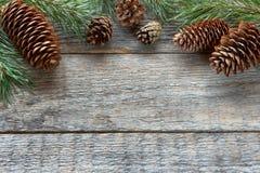 Οι κώνοι και οι κλάδοι πεύκων στο ξύλινο υπόβαθρο Χριστουγέννων υποβάθρου αντιγράφουν τη διαστημική εκλεκτική εστίαση Στοκ φωτογραφία με δικαίωμα ελεύθερης χρήσης