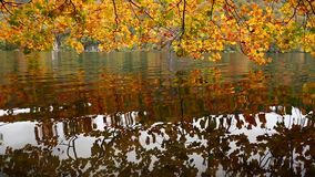 οι λίμνες κληρονομιάς της Κροατίας εμφανίζουν λίστα τον εθνικό κόσμο της ΟΥΝΕΣΚΟ plitvice πάρκων απόθεμα βίντεο