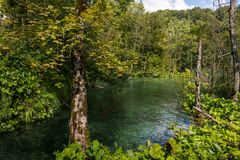 οι λίμνες κληρονομιάς της Κροατίας εμφανίζουν λίστα τον εθνικό κόσμο της ΟΥΝΕΣΚΟ plitvice πάρκων στοκ εικόνα