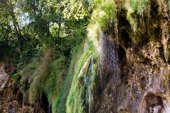 οι λίμνες κληρονομιάς της Κροατίας εμφανίζουν λίστα τον εθνικό κόσμο της ΟΥΝΕΣΚΟ plitvice πάρκων στοκ εικόνα με δικαίωμα ελεύθερης χρήσης