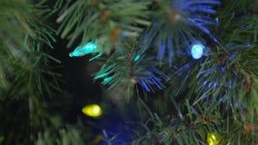 Οι λεπτομέρειες φω'των χριστουγεννιάτικων δέντρων προκαλούν τις διαφορετικές ελαφριές τοποθετήσεις και τα χρώματα απόθεμα βίντεο