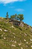 Οι λόφοι με τις πέτρες Altai, νότια Σιβηρία, Ρωσία στοκ εικόνα με δικαίωμα ελεύθερης χρήσης