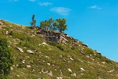 Οι λόφοι με τις πέτρες Altai, νότια Σιβηρία, Ρωσία στοκ φωτογραφίες με δικαίωμα ελεύθερης χρήσης