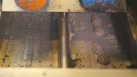 Οι μαζικές ροές ελιών κάτω στα πιάτα σιδήρου σε ένα εργοστάσιο φιλμ μικρού μήκους