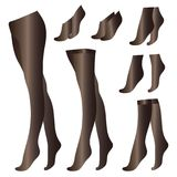Οι μαύρες διαφανείς λεπτές γυναικείες κάλτσες pantyhose κτυπούν βίαια τις περικνημίδες που απομονώνονται στο άσπρο διανυσματικό σ ελεύθερη απεικόνιση δικαιώματος
