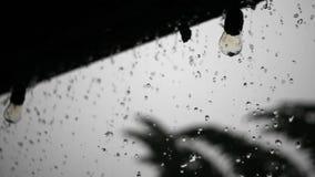 Οι μεγάλες πτώσεις της βροχής ποτίζουν την πτώση πέρα από τα ηλεκτρικά φω'τα ινών ενώ η δύναμη είναι έξω απόθεμα βίντεο
