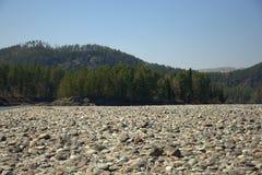 Οι μεγάλες όχθεις του ποταμού Katun καλύπτονται με τις στρογγυλές πέτρες με τα υψηλά βουνά στο υπόβαθρο Gorny Altai, Σιβηρία, Ρωσ στοκ εικόνα με δικαίωμα ελεύθερης χρήσης