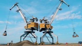 Οι μηχανές φόρτωσης μεταφέρουν το αμμοχάλικο στη γρήγορη κίνηση απόθεμα βίντεο