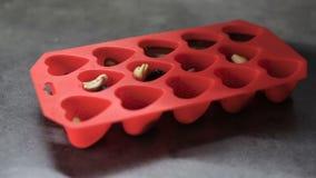 Οι μορφές υπό μορφή καρδιών χύνονται με τη λειωμένη σοκολάτα φιλμ μικρού μήκους