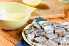 Οι μπακαλιάροι αλιεύουν με το μίγμα πάπρικας αλευριού και αλευριού καλαμποκιού έτοιμων για το τηγάνισμα Στοκ εικόνες με δικαίωμα ελεύθερης χρήσης