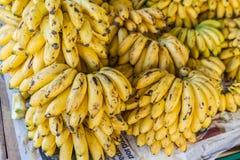 οι μπανάνες συσσωρεύουν ώριμο κίτρινο Στοκ Φωτογραφία
