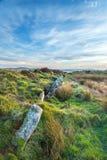Οι μόνιμες πέτρες σε Bodmin δένουν Στοκ Εικόνες