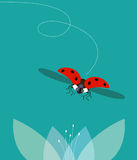 Οι μύγες ladybug Στοκ φωτογραφία με δικαίωμα ελεύθερης χρήσης