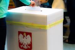 Οι νέες γυναίκες βάζουν την κάρτα ψηφοφορίας στο κιβώτιο στο πολωνικό περιφερειακό ellection στοκ εικόνες