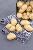 Οι νέες πατάτες είναι καθαρές σε ένα φλυτζάνι και σε μια πετσέτα Λαχανικά θερινών συγκομιδών και υγεία, διάστημα αντιγράφων στοκ εικόνες με δικαίωμα ελεύθερης χρήσης