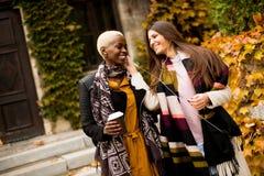 Οι νέες multiethnic γυναίκες ακούνε μουσική στην ημέρα φθινοπώρου Στοκ φωτογραφίες με δικαίωμα ελεύθερης χρήσης