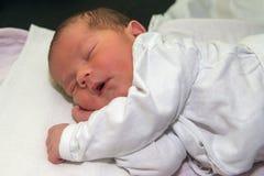 Οι νεογέννητες παλαιές 3 ημέρες κοιμούνται στοκ εικόνες