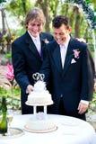Οι νεόνυμφοι κόβουν το γαμήλιο κέικ στοκ φωτογραφία
