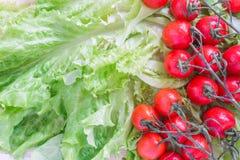 Οι ντομάτες κερασιών που καλύπτονται με τις πτώσεις νερού βρίσκονται βάσει των πράσινων φύλλων μαρουλιού Στοκ εικόνες με δικαίωμα ελεύθερης χρήσης