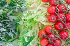 Οι ντομάτες κερασιών που καλύπτονται με τις πτώσεις νερού βρίσκονται βάσει των πράσινων φύλλων μαρουλιού Στοκ φωτογραφίες με δικαίωμα ελεύθερης χρήσης