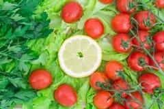 Οι ντομάτες κερασιών που καλύπτονται με τις πτώσεις νερού βρίσκονται βάσει των πράσινων φύλλων μαρουλιού Στοκ Εικόνες