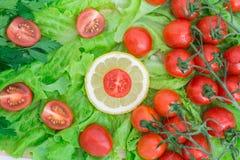 Οι ντομάτες κερασιών που καλύπτονται με τις πτώσεις νερού βρίσκονται βάσει των πράσινων φύλλων μαρουλιού Στοκ Φωτογραφίες