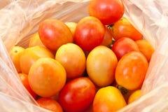 Οι ντομάτες στη πλαστική τσάντα Στοκ Φωτογραφίες