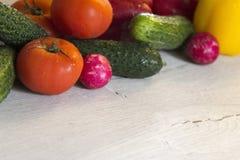 Οι ντομάτες, τα πιπέρια, τα αγγούρια και τα ραδίκια είναι στην άκρη Στοκ φωτογραφίες με δικαίωμα ελεύθερης χρήσης