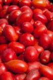 Οι ντομάτες SAN Marzano είναι έτοιμες να κάνουν τη σάλτσα Στοκ φωτογραφία με δικαίωμα ελεύθερης χρήσης