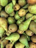 οι νωποί καρποί των καρπών αχλαδιών του flavovirent χρώματος είναι χρήσιμοι στην υγεία πολλή βιταμίνη, χυμός, διανυσματική απεικόνιση