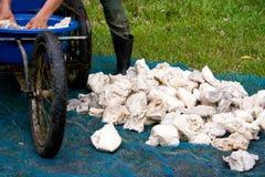 Οι ξηροί λαστιχένιοι κύβοι. Στοκ Φωτογραφία