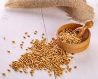 Οι ξηροί σπόροι σίτου, σιτάρια στο ξύλινο κύπελλο στοκ εικόνες με δικαίωμα ελεύθερης χρήσης
