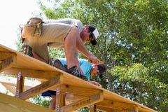 οι ξυλουργοί καρφώνουν το κοντραπλακέ Στοκ Φωτογραφία