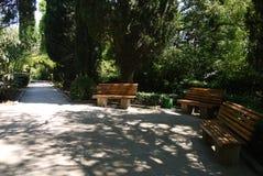 Οι ξύλινοι πάγκοι στο πάρκο σε μια άνετη γραφική θέση στη σκιά των δέντρων δίπλα στην πορεία είναι ένα καλό μέρος που χαλαρώνει Στοκ φωτογραφίες με δικαίωμα ελεύθερης χρήσης