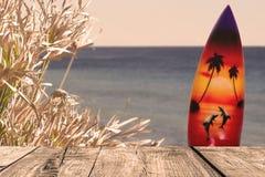 Οι ξύλινοι πίνακες στην άποψη θάλασσας με τις εγκαταστάσεις και την κυματωγή επιβιβάζονται Στοκ Εικόνες