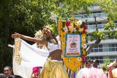 Οι ομάδες του Ρίο καρναβάλι παρήλασαν μέσω της πόλης και προειδοποιούν για τους κινδύνους ιών Zika Στοκ φωτογραφίες με δικαίωμα ελεύθερης χρήσης
