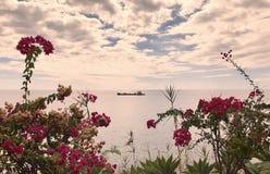 Οι ομορφότερες παραλίες στη Μαδέρα Στοκ εικόνα με δικαίωμα ελεύθερης χρήσης