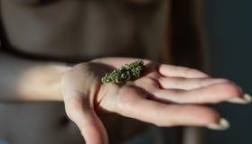 Οι οφθαλμοί μαριχουάνα στη γυναίκα δίνουν την κινηματογράφηση σε πρώτο πλάνο στοκ εικόνες με δικαίωμα ελεύθερης χρήσης