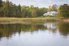 Οι πάπιες κολυμπούν σε μια λίμνη Στοκ φωτογραφία με δικαίωμα ελεύθερης χρήσης