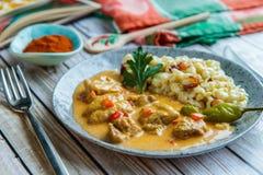 Οι πάπρικες από το κοτόπουλο με διακοσμούν σε ένα κεραμικό πιάτο στοκ εικόνα