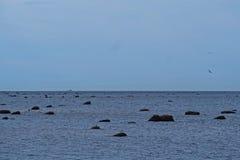 Οι πέτρες στη θάλασσα της Βαλτικής Στοκ φωτογραφίες με δικαίωμα ελεύθερης χρήσης