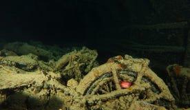 Οι παλαιές μοτοσικλέτες μέσα στο όνομα συντριμμιών είναι SS Thistlegorm Στοκ Φωτογραφίες