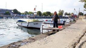 Οι παλαιές τροφές ψαράδων αλιεύουν τα έντερα στους γλάρους απόθεμα βίντεο
