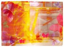 οι πεταλούδες ανασκόπησης επενδύουν με φτερά grunge απεικόνιση αποθεμάτων