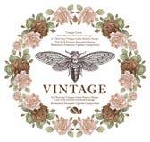 Οι πεταλούδες, cicada, έντομα, μπαρόκ αυξήθηκαν λουλούδια Εκλεκτής ποιότητας κάρτα πλαισίων ταπετσαρία επίσης corel σύρετε το διά Στοκ φωτογραφία με δικαίωμα ελεύθερης χρήσης