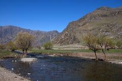 Οι πετρώδεις όχθεις ενός ποταμού βουνών εισβάλλονται με τους θάμνους r o στοκ φωτογραφία