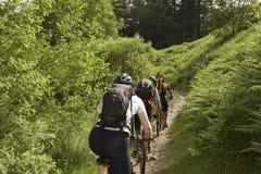 Οι ποδηλάτες στη χώρα ακολουθούν Στοκ Φωτογραφία